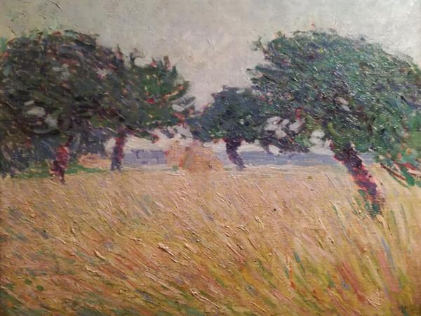 Umberto Boccioni, <em>Paesaggio marino con alberi</em>, 1908, olio su tela, 64,5 x 54,5 cm.&nbsp;