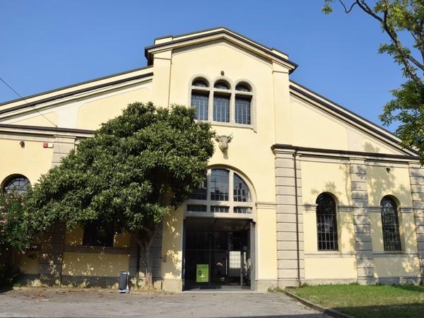 Cattedrale ex Macello, Padova