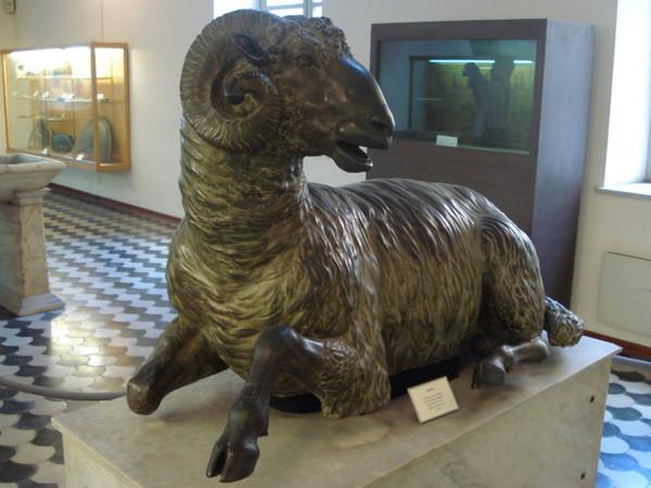 Ariete di Siracusa, prima metà del III sec. a.C. Bronzo, cm 79x138. Provenienza: Siracusa, Castello Maniace Palermo, Museo Archeologico Regionale A. Salinas
