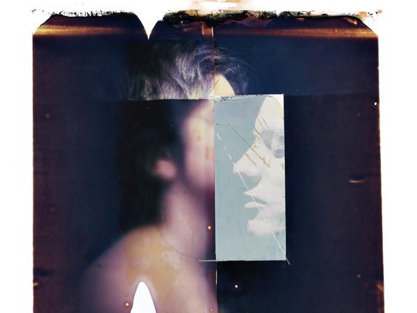 Paolo Gioli, Vessazioni, 2010, trasferimenti su acrilico, camera ottica Polaroid, cm. 50x60