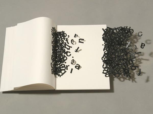 Carlo Lauricella, Scripta volant, 2013. Carta, plexiglass, filo di ferro, cm 74x42x13