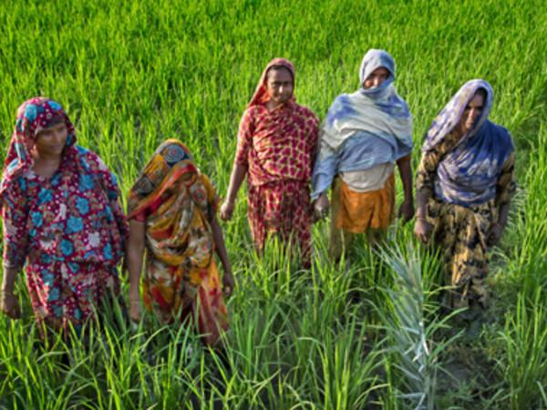 Girls not brides. Spose bambine in Bangladesh