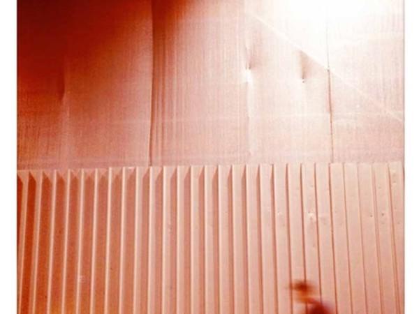 Pierpaolo Pitacco, 20x25, polaroid
