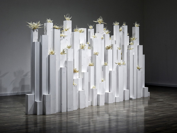 Opera di Tamara Ferioli