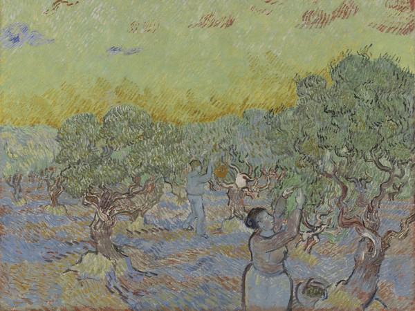 Vincent van Gogh, Oliveto con due raccoglitori di olive, Dicembre 1889, Olio su tela, Otterlo Museum