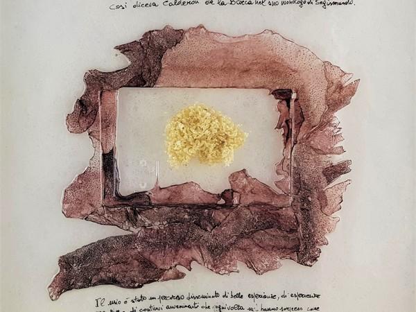 Gianni Depaoli, Vita, 2020, tecnica mista su fibra, pelle e inchiostro di calamaro, schiuse di ovature, metacrilato. 45x45 cm.