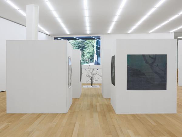 Peter Wächtler,Up the Heavies, 2019. Installation view, Fondazione Antonio Dalle Nogare, Bolzano