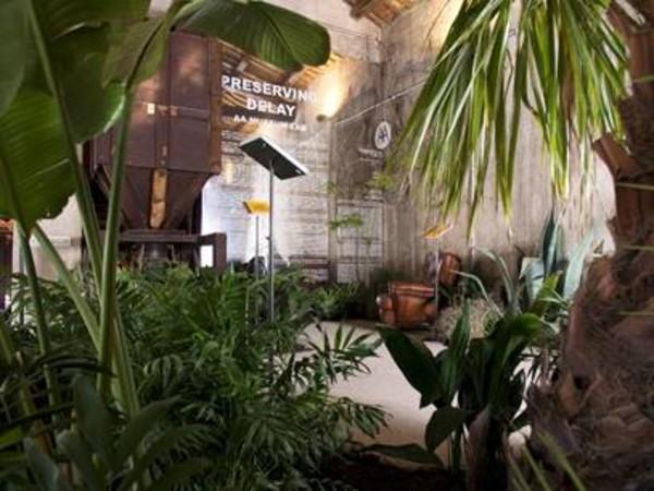 Preserving Delay, Convento Sant'Antonino, Palermo