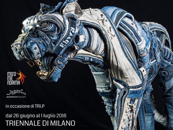 Afran, I'm Blue Panther, Triennale di Milano