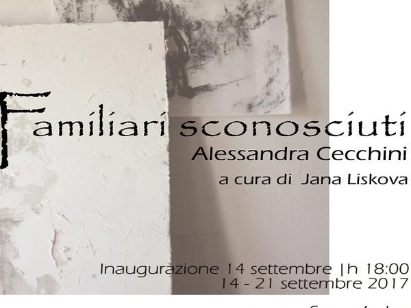 Alessandra Cecchini, Familiari sconosciuti