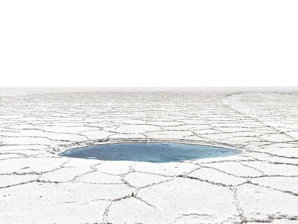 Fabrizio Ceccardi, Senza titolo, serie Out of Eden, 2010-11, stampa lambdacolor, cm. 113x99 (2)