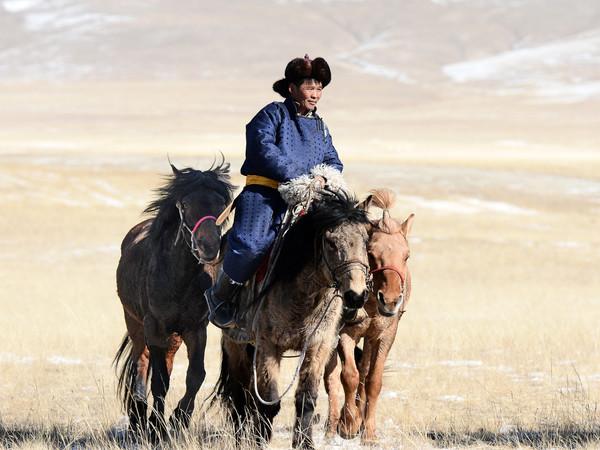 Carla Parato Milone e Giorgio Milone, Cavallo nella prateria, Mongolia