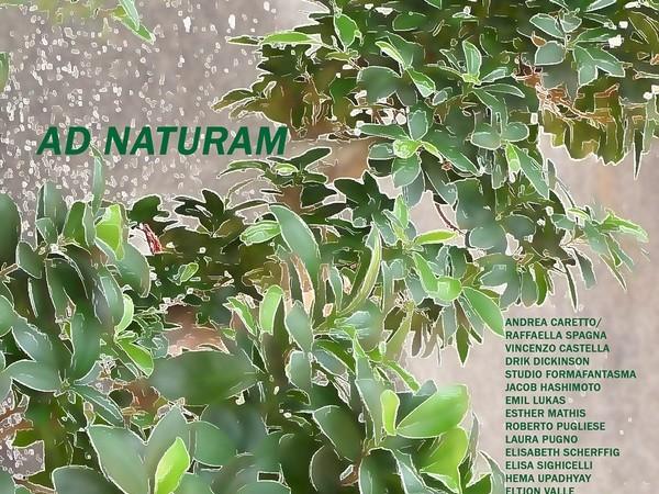 Ad Naturam, Museo Civico di Storia Naturale, Verona