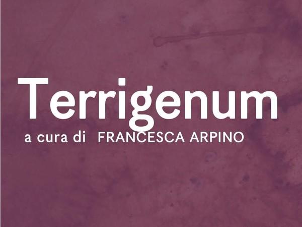 <em>Terrigenum</em>, Fondazione Sassi, Matera