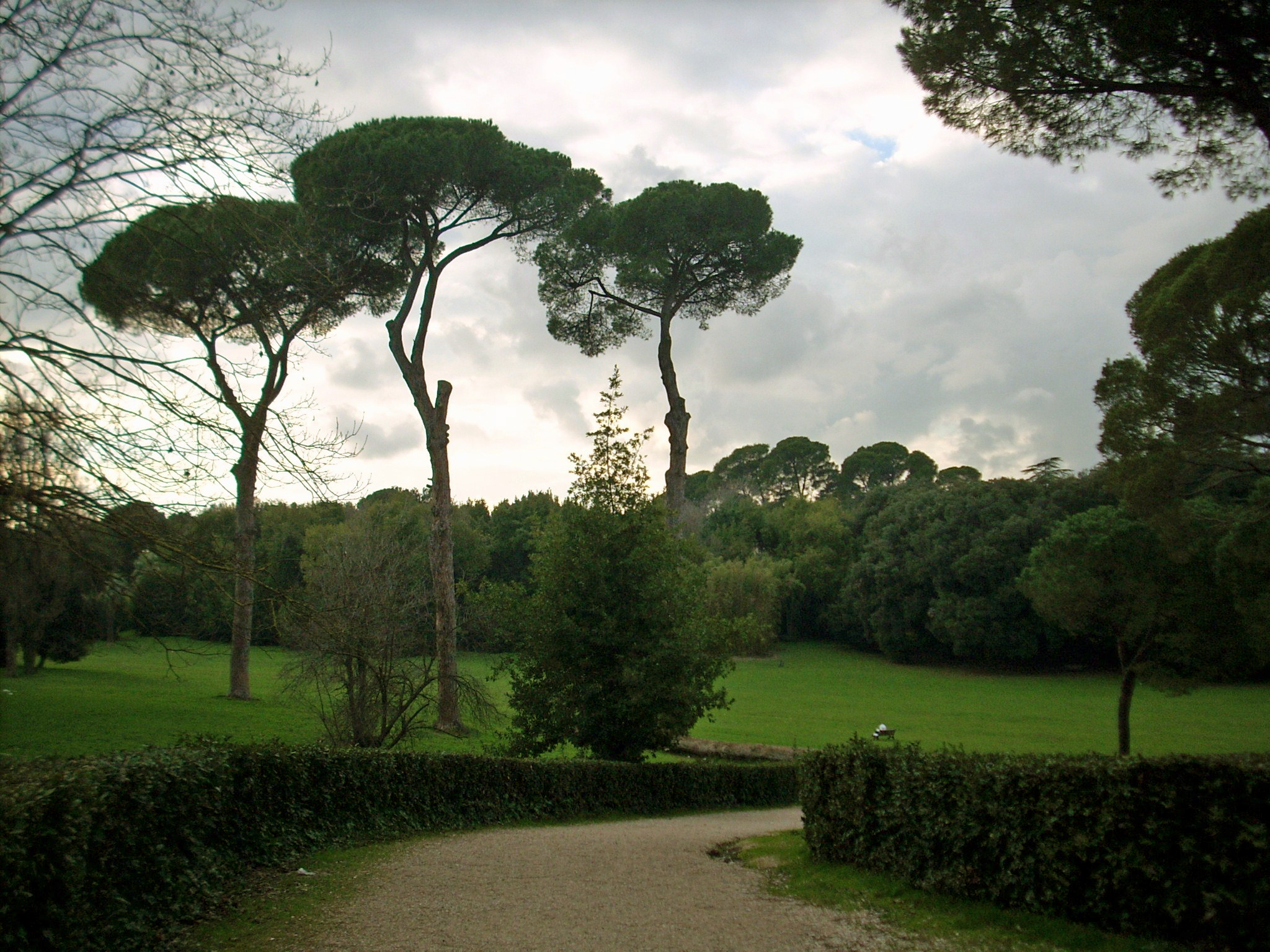 Ristorante Vicino Villa Ada Roma